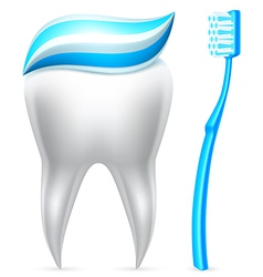 Tooth with toothpaste and toothbrush vector
