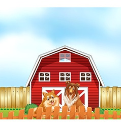 Dogs and barn vector
