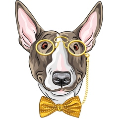 Hipster dog bullterrier breed vector