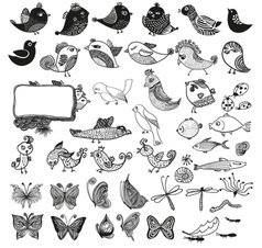 Birds and butterly vector