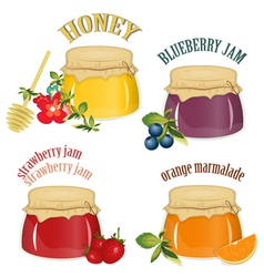 Jars of jam and honey vector