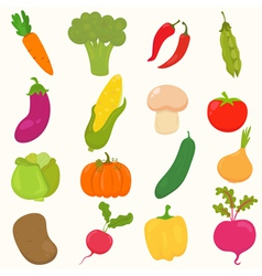 Vegetables healthy food vector