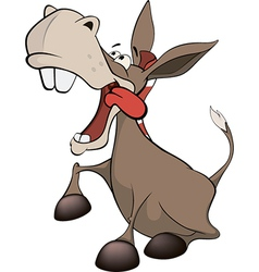 A little burro cartoon vector