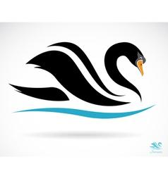 Swans vector