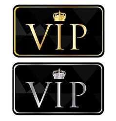 Silver and golden vip pass vector