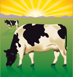 Cows at sunrise vector