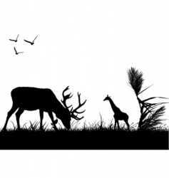 Wildlife vector