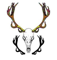 Amusing deer skull vector pics