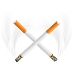 Cigarettes vector