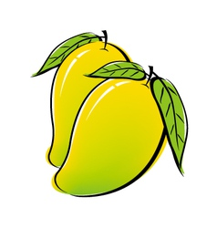 Mango design on white background vector