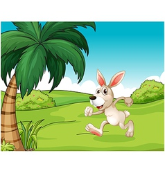 A bunny running at the hilltop vector
