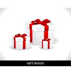 Beautiful gift boxes vector