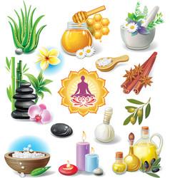 Set of spa treatment symbols vector