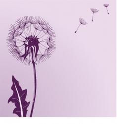 Blow dandelions vector