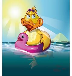 Duck swim vector