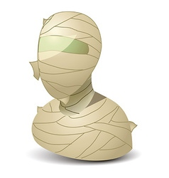 Mummy icon vector