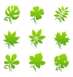 Leaves elements for design vector