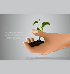 Handful of ground with green sprout in her hands vector