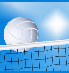 Volleyball and the net vector