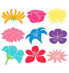Colourful floral designs vector