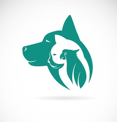 Image of an dog cat and bird vector