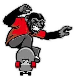 Chimpanzee ride skateboard vector