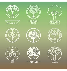 Tree logos and badges vector