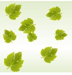 Fig leaves background vector