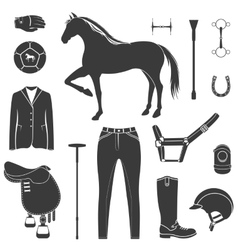 Set of icons polo vector