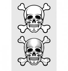 Skull and skeleton bones vector