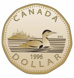 Canadian dollar vector