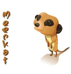 Animal meerkat vector