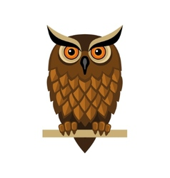 Owl isolated on white vector