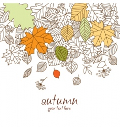 Autumn leaf fall vector