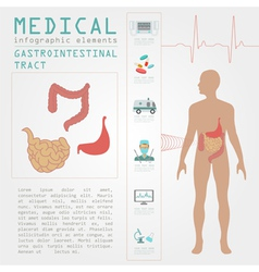 Medical and healthcare infographic vector
