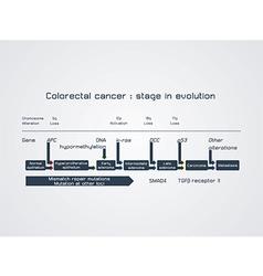 Colorrec vector