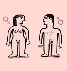 Human nude couple vector