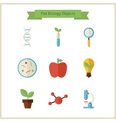 Flat school biology and science objects set vector