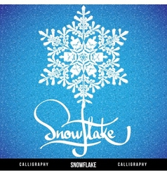 Natural christmas snowflake vector