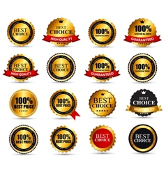 Best choice label set vector