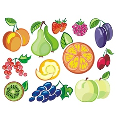 Collection of fruits icons vector
