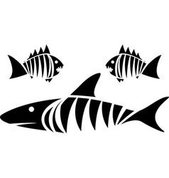 Tiger shark and piranhas vector