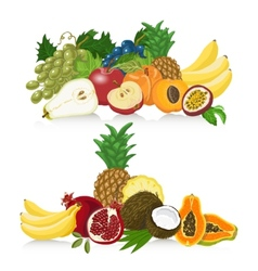 Set of fresh healthy fruit healthy lifestyle vector