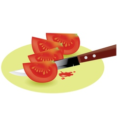 Tomato slices and kitchen knife vector