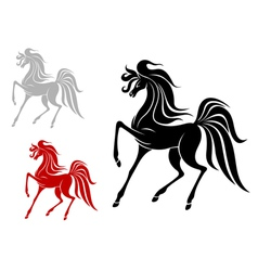 Arabian stallion in three variations vector