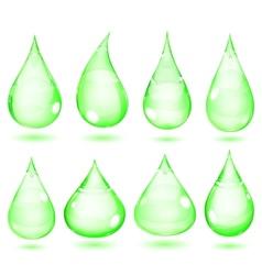 Opaque green drops vector
