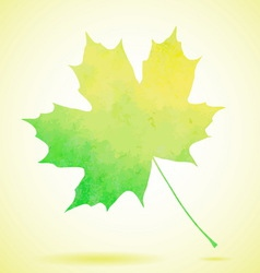 Green watercolor painted autumn maple leaf vector