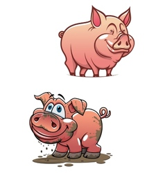 Cartoon dirty piggy and clean pink pig vector