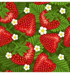 Excellent seamless pattern with strawberry vector
