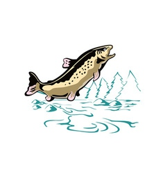 Trout fish leaping vector